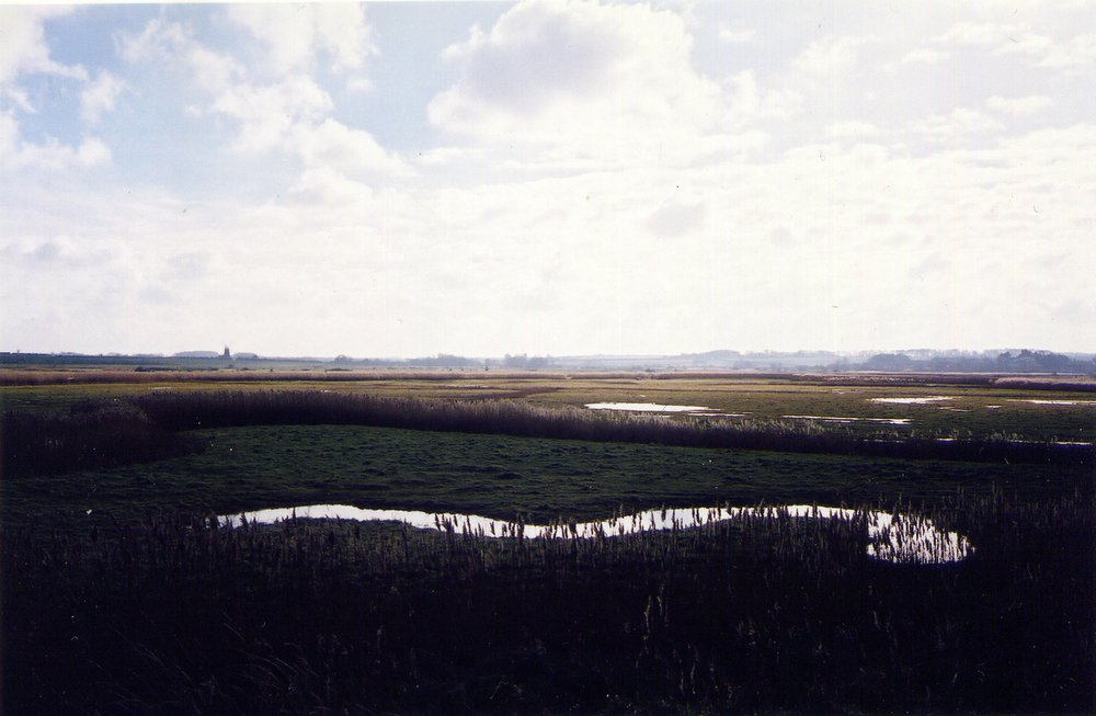 Marsh_View_Scrapbook_20.jpg